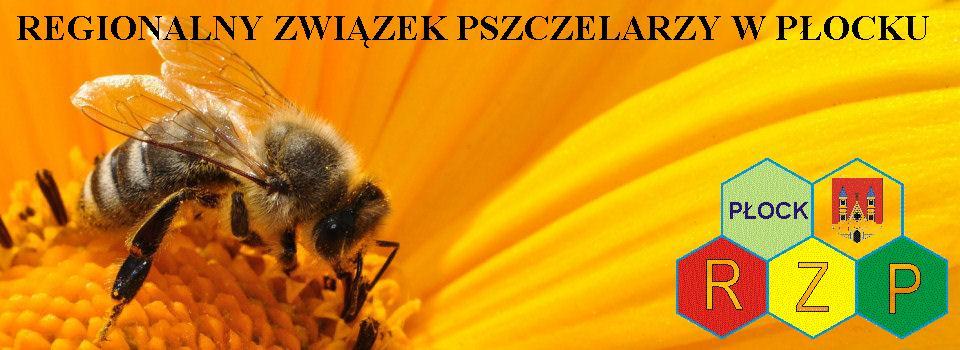 RZP Płock